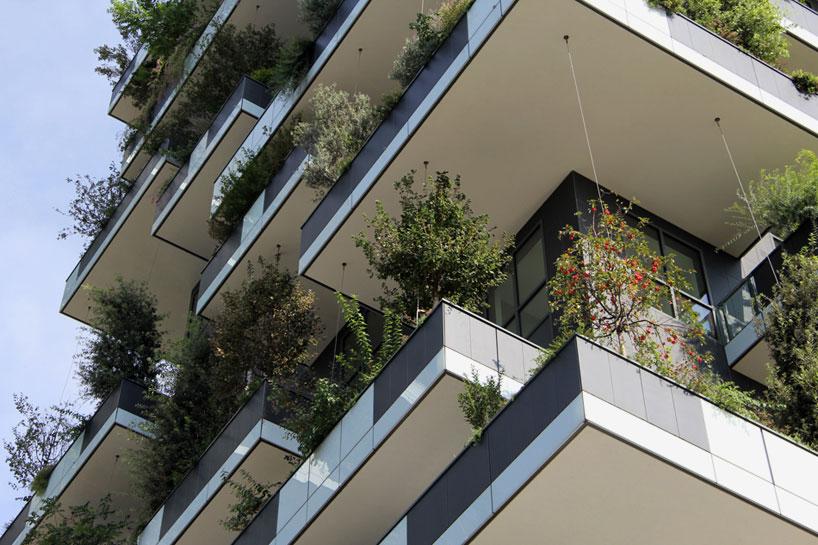 bosco verticale vertical forest stefano boeri studio milan designboom 051 - «Висячие сады» Милана. 8 чудо света