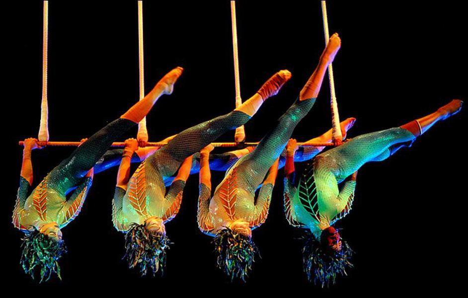 Cirque - Что посетить в Милане. Неделя 47