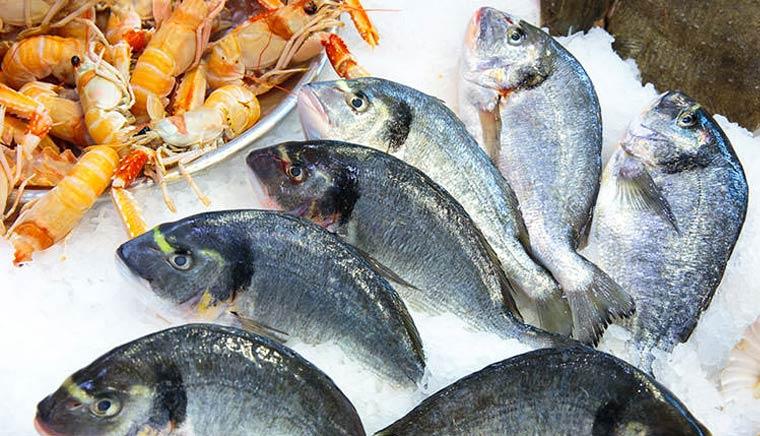 Изысканные рыбные блюда в самом центре Милана