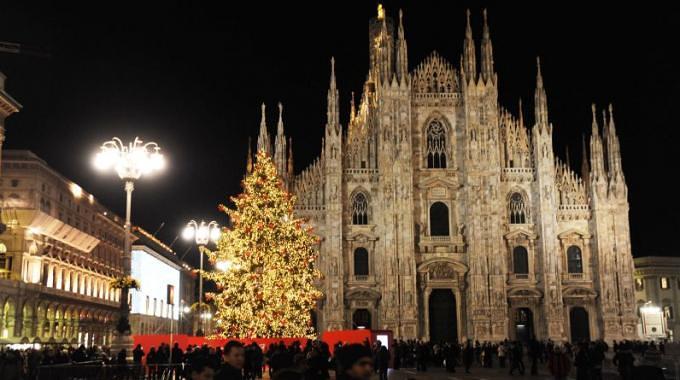 albero - Что посмотреть в Милане на Новый Год