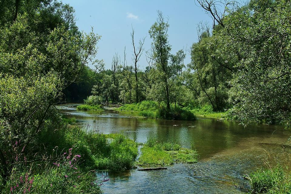 зелёные парки в окрестностях Милана парк тичино1