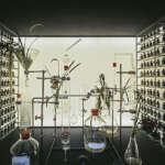 garden06 150x150 - 7 запоминающихся выставок Мебельного Салона 2015