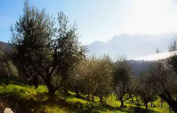 turismo agro - Агротуризм в Ломбардии: вкусно, качественно и за разумные деньги