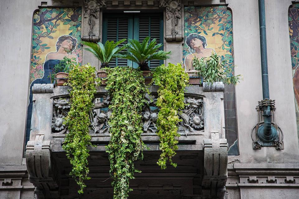 KB0A1449 - Почему серый Милан на самом деле зелёный?