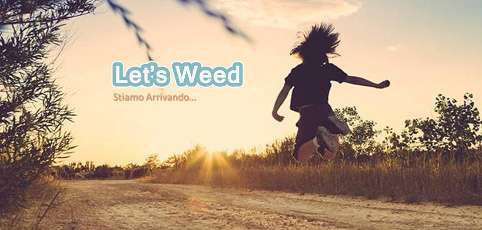 let's weed стартап