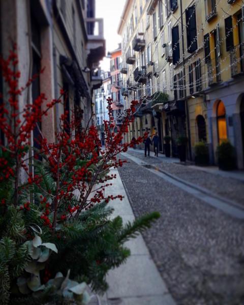 480x600 - Взгляд на Милан в фотообъектив от Арины Карабановой