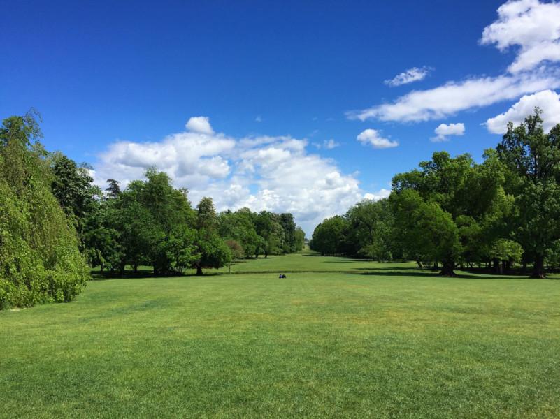 зелёные парки в окрестностях Милана monza